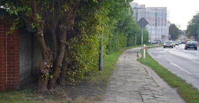 Dziury, kałuże i krzaki na chodniku